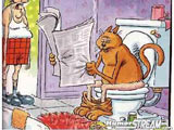 I'm sorry we ever trained that cat to use the toilet